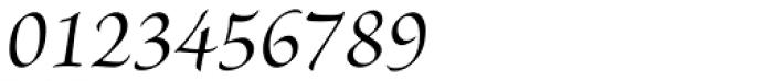 Brioso Pro SubHead Medium Italic Font OTHER CHARS