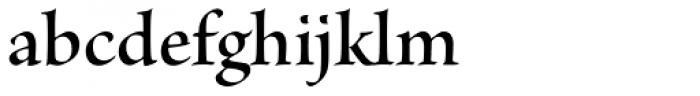 Brioso Pro SubHead SemiBold Font LOWERCASE