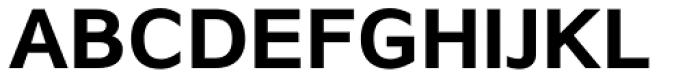Browser Sans Bold Font UPPERCASE
