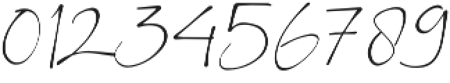 BS Signature otf (400) Font OTHER CHARS