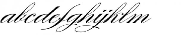 Burgues Script Font LOWERCASE