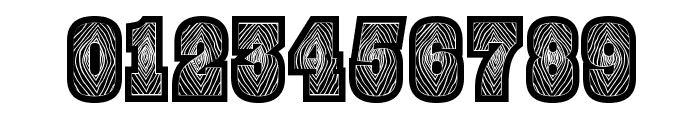 BurrisBlack Font OTHER CHARS