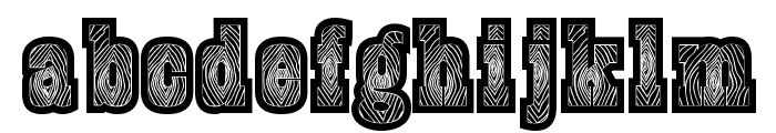 BurrisBlack Font LOWERCASE