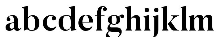 Butler-Bold Font LOWERCASE