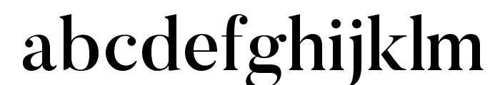 Butler-Medium Font LOWERCASE
