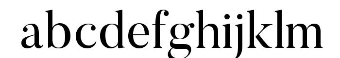 Butler Font LOWERCASE