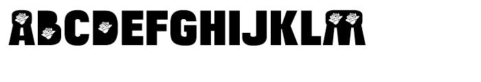Bulltoad Rose Font UPPERCASE