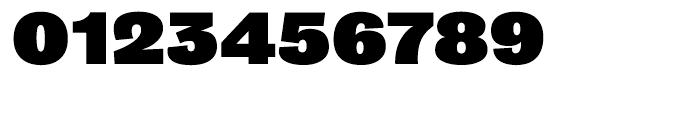 Bureau Grot Ultra Black Font OTHER CHARS