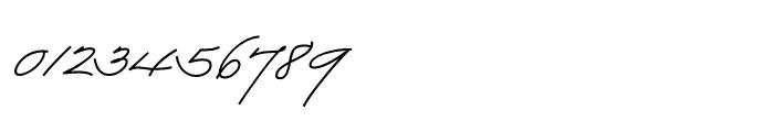 Business Penmanship Bold Font OTHER CHARS