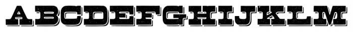 Buckboard Alternate Pro Regular Font LOWERCASE