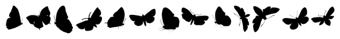 Butterfly Effect Medium Font UPPERCASE