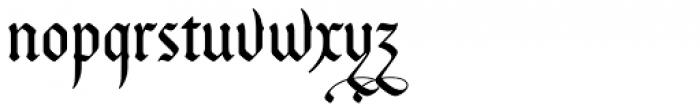 Bucanera Soft Swash Font LOWERCASE