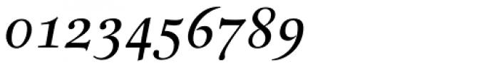 Buccardi Std Italic Font OTHER CHARS