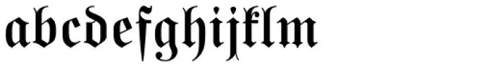 Buchfraktur Halbfett Font LOWERCASE