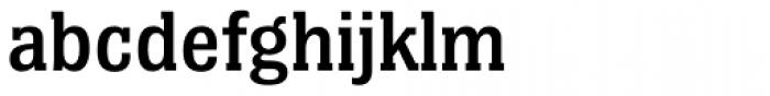 Bulldog Hunter Medium Std Font LOWERCASE