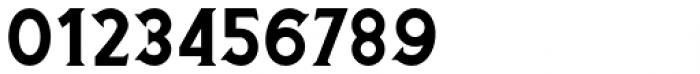 Buryland Serif Regular Font OTHER CHARS