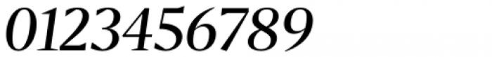 Bw Darius Regular Italic Font OTHER CHARS