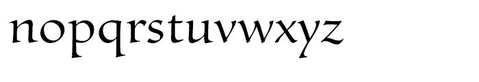 Byngve Regular Font LOWERCASE