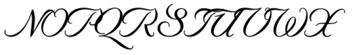 Byron RR Swash Medium Regular Font UPPERCASE