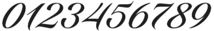 Candlescript Pro Regular otf (400) Font OTHER CHARS