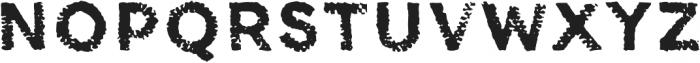 Canvas Tiny Sans otf (400) Font UPPERCASE