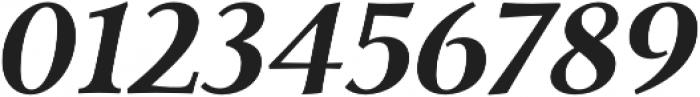 Carrig Pro Bold Italic otf (700) Font OTHER CHARS