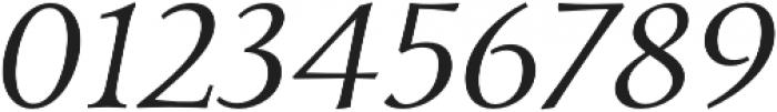 Carrig Pro Light Italic otf (300) Font OTHER CHARS