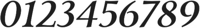 Carrig Pro Medium Italic otf (500) Font OTHER CHARS