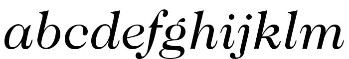 Caslon224Std-BookItalic Font LOWERCASE
