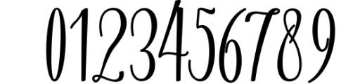 Calligraphy Font Bundles 12 Font OTHER CHARS