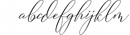 Camelia Calligraphy Modern Font LOWERCASE