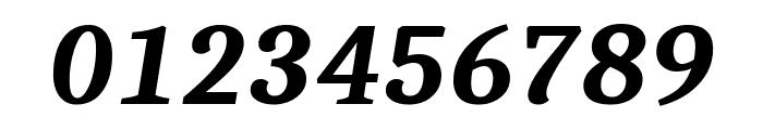Caladea Bold Italic Font OTHER CHARS