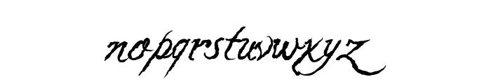 Caligraf 1435 Italic Font LOWERCASE