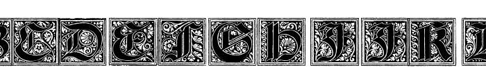Camelot_Initials Font UPPERCASE