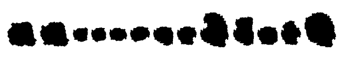 Camosport Font UPPERCASE