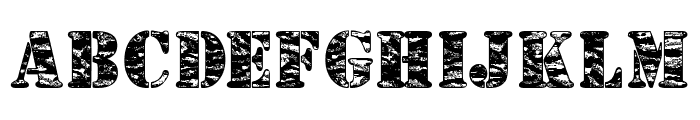 Camouflage Jungle Font UPPERCASE