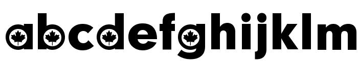 Canadian Participants Font LOWERCASE