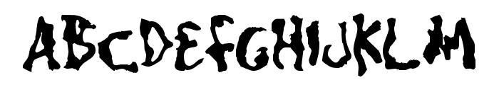 CaniptionFit Font UPPERCASE