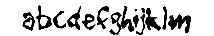 CaniptionFit Font LOWERCASE