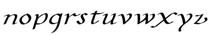 CarolusKlein-Oblique Font LOWERCASE