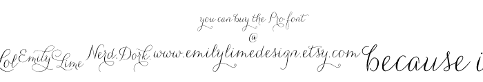 CarolynaWords Font LOWERCASE
