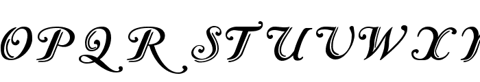 Caslon Calligraphic Initials Font LOWERCASE