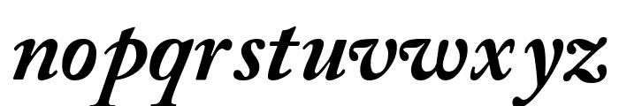 CaslonBlackSSK Italic Font LOWERCASE
