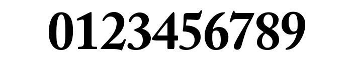 CaslonBlackSSK Font OTHER CHARS