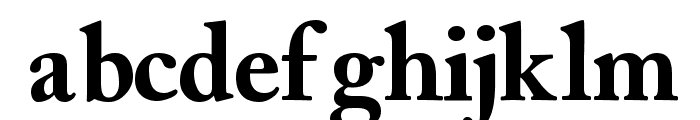 CaslonBlackSSK Font LOWERCASE