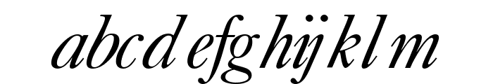 CaslonFiveSSK Italic Font LOWERCASE