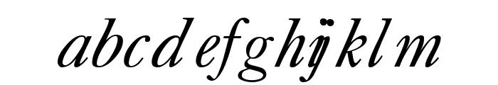 CaslonLightSSK Italic Font LOWERCASE