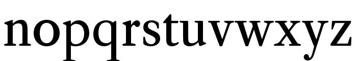 CaslonOS-Regular Font LOWERCASE
