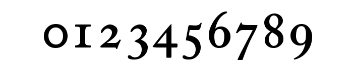 CaslonProSSK SemiBold Font OTHER CHARS