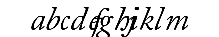 CaslonSSK Italic Font LOWERCASE